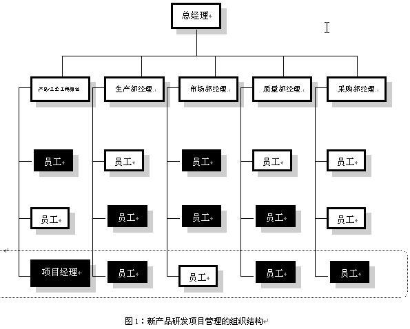 新产品研发项目团队组织结构