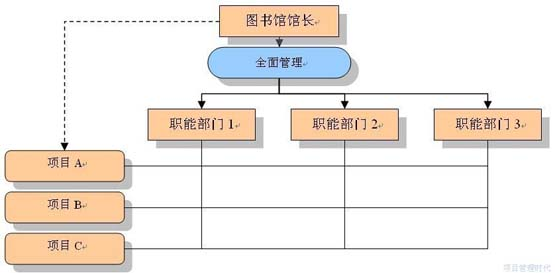 图三:矩阵式组织   项目管理者