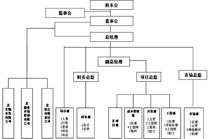 某房地产开发公司基于项目管理的组织结构咨询案例图片