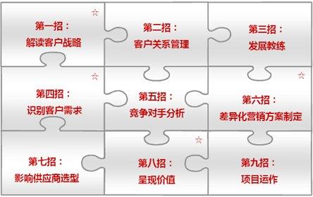 华为crm咨询项目,负责crm项目中销售流程全球招标